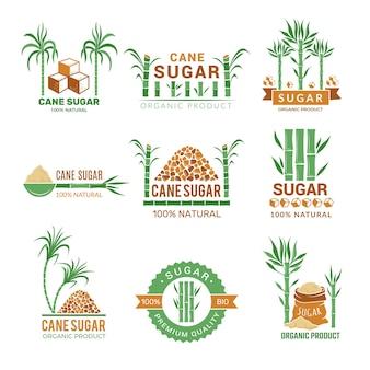 Fabrication de canne à sucre. insignes ou étiquettes de feuilles d'industrie agricole de production de plantes de bonbons avec place pour votre texte.