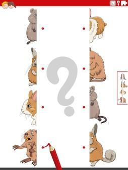 Faire correspondre des moitiés d'images avec un jeu éducatif d'animaux