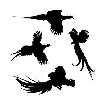 Faisan volant silhouette set design inspiration