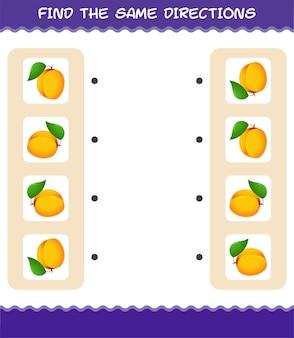 Faites correspondre les mêmes directions d'abricot. jeu de correspondance. jeu éducatif pour les enfants et les tout-petits de la maternelle