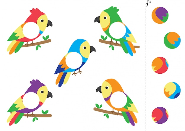 Faites correspondre des parties de perroquets de dessin animé.