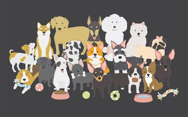 Famille de chiens