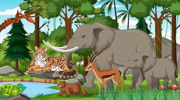 Famille D'éléphants Avec D'autres Animaux Sauvages Dans La Scène Forestière Vecteur Premium