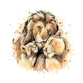 Famille de lions d'une éclaboussure d'aquarelle, croquis dessiné à la main. illustration de peintures