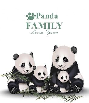 Famille Panda Vecteur Premium