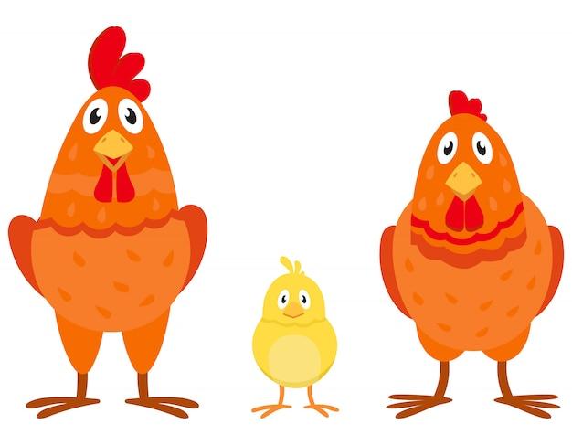 Famille de poulet en style cartoon. oiseaux de ferme de sexe et d'âge différents.