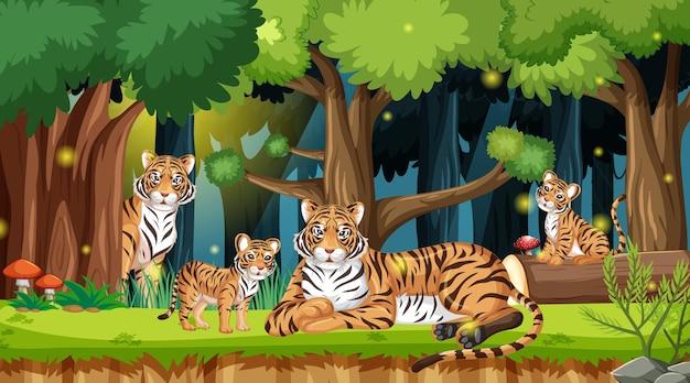Famille de tigres en arrière-plan de paysage forestier