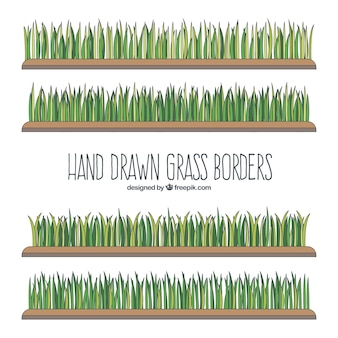 Fantastiques frontières d'herbe dessinés à la main