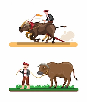 Farmer race buffalo asian traditional attraction, man riding buffalo collection set in cartoon illustration vector