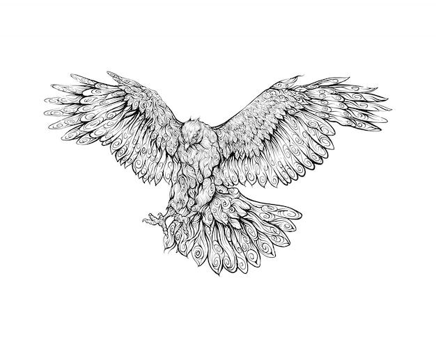 Faucon en dessin à la main ornement