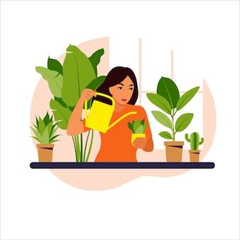 Femme arrosant les plantes d'intérieur à la maison illustration.