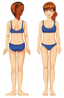 Femme, bleu, bikini, vue frontale