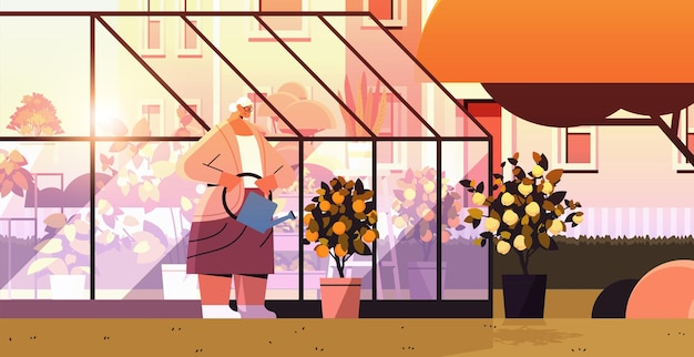 Femme jardinier avec arrosoir en prenant soin des plantes en pot de citron et d'orange à la serre de l'arrière-cour ou à l'illustration vectorielle horizontale du jardin de la maison