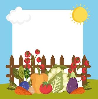 Ferme et bannière de légumes