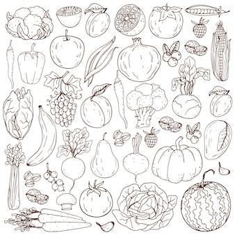 Ferme biologique éléments de mode de vie sain. légumes sains dessinés à la main, fruits, baies, noix, champignons