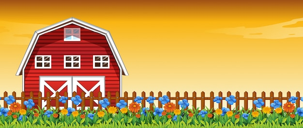 Ferme de fleurs dans la scène du ciel coucher de soleil avec fond de grange