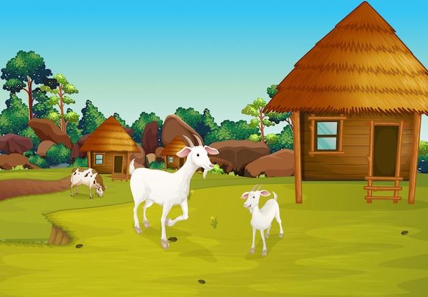 Une ferme avec des huttes nipa