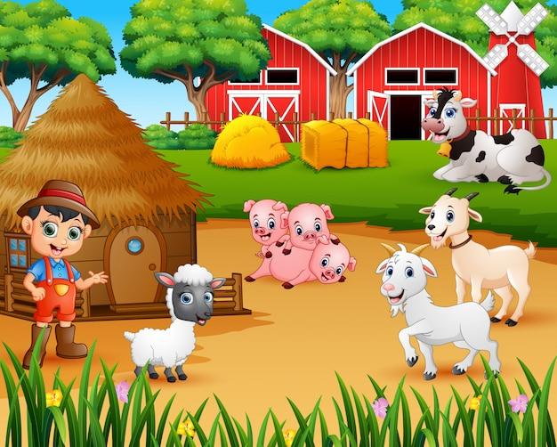 Fermier et animal de la ferme dans la basse-cour