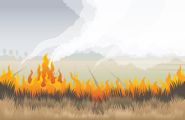 Feu d'herbe, champ avec fond d'herbe sèche brûlante