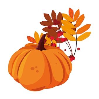 Feuillage de citrouille heureux saison d'automne plat