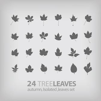 Feuille d'arbre collection d'icônes