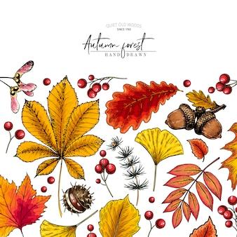 Feuille d'automne dessinée à la main. feuilles d'arbres colorés de vecteur.