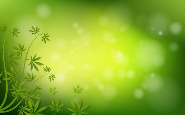 Feuille de cannabis vert drogue herbe de marijuana fond