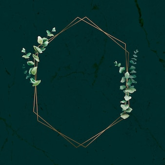 Feuille d'eucalyptus dessinée à la main avec cadre doré hexagonal