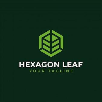 Feuille hexagone, eco, jardin, botanique, logo nature