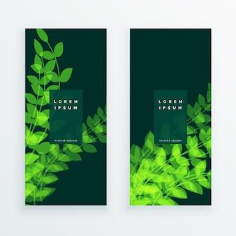 Feuille de la nature verticle banner card
