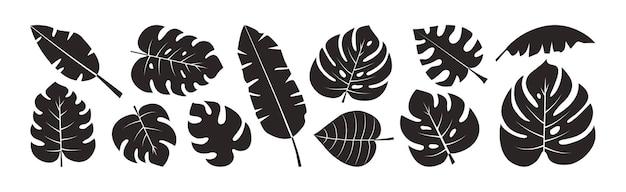 Feuille de palmier définie des silhouettes noires