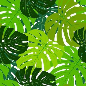 Feuille de palmier sans soudure de fond vector illustration eps10