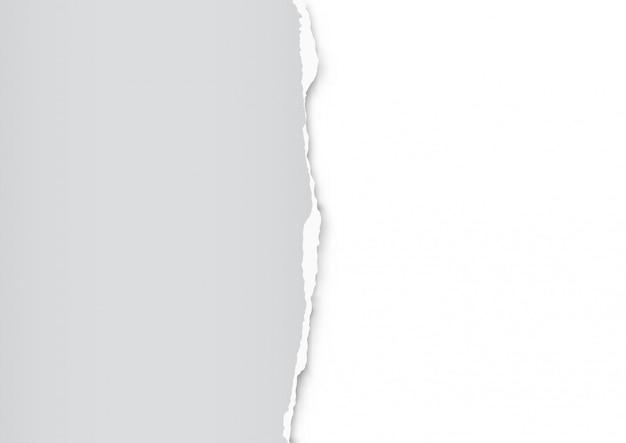 Feuille de papier déchiré
