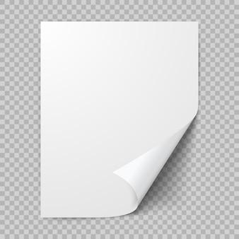 Feuille de papier enroulée