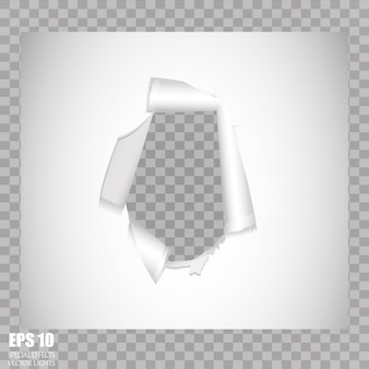 Feuille de papier gondolé sur fond transparent