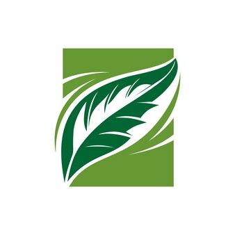 Feuille verte illustration vecteur logo design inspiration vert