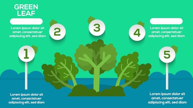 Feuille verte infographie avec étapes, options, statistiques