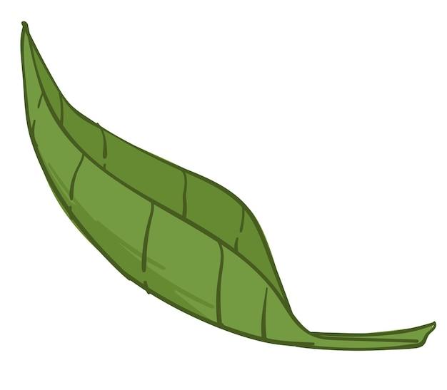 Feuille verte qui tombe, icône isolée de la nature et des éléments naturels. flore saisonnière d'été ou de printemps. botanique arbustes ou buissons, plantes ou arbres. logo de l'écologie ou signe de symbole. vecteur dans un style plat