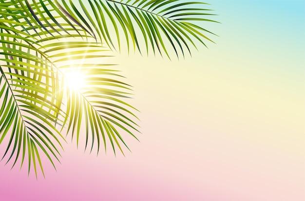 Feuille verte de vecteur de palmier sur fond de ciel spectre et rayons de soleil
