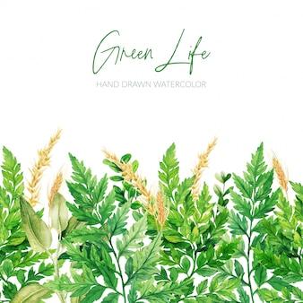Feuilles d'aquarelle, en-tête de verdure, bordure transparente, dessinés à la main