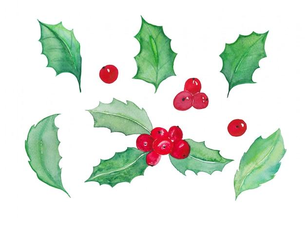 Feuilles d'arbre de noël et aquarelle de cerise de noël isolé - décoration d'illustration de noël aquarelle