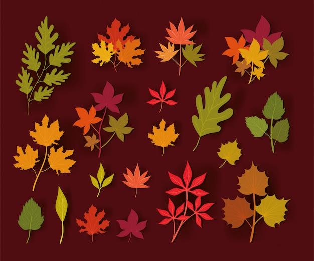 Feuilles d'automne, décoration de jardin saison nature ornement et illustration de la botanique