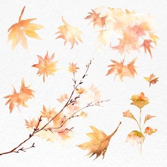 Feuilles d'automne définies graphique saisonnier orange vecteur aquarelle
