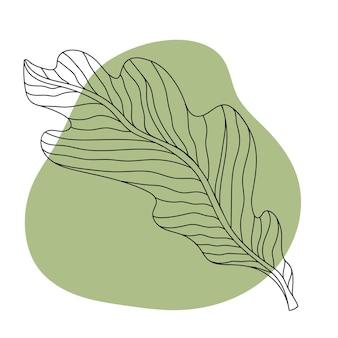 Feuilles d'automne dessin au trait noir sur fond coloré image isolée