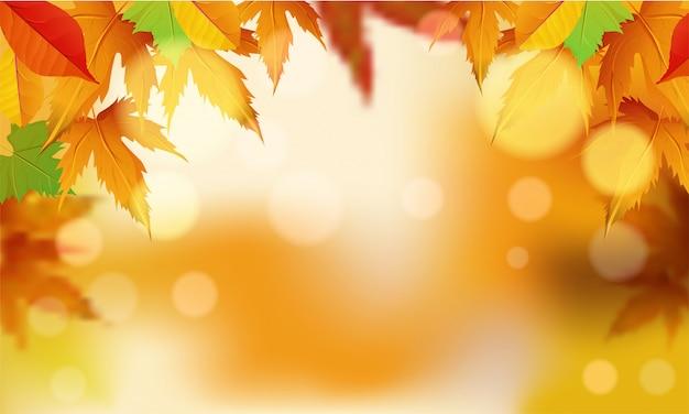 Feuilles d'automne fond coloré.