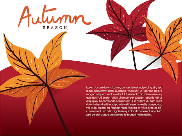 Feuilles d'automne sur le modèle de fond blanc et rouge