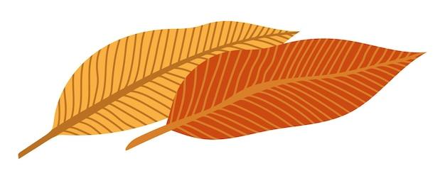 Feuilles d'automne orange illustration vectorielle. cadre d'halloween d'automne avec des feuilles, une icône graphique ou une impression isolée sur fond blanc