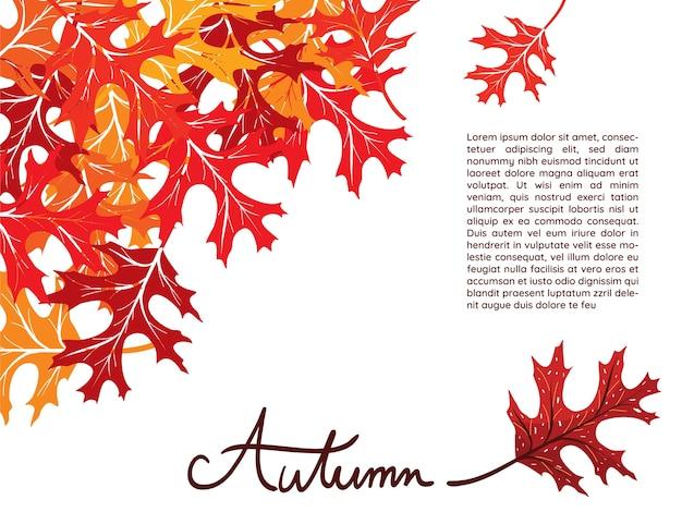 Feuilles d'automne orange et rouge sur fond blanc