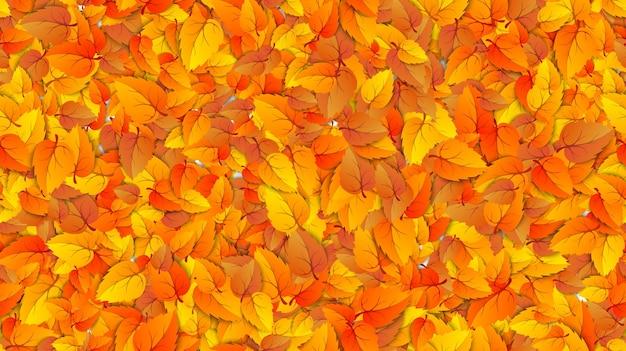 Feuilles d'automne transparentes bannière de remplissage horizontal modèle de publicité avec automne automne doré