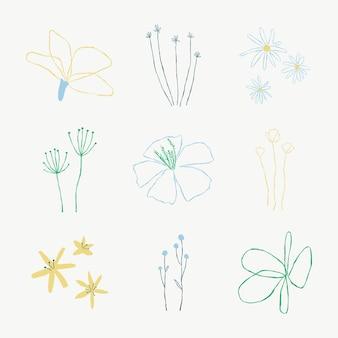 Feuilles botaniques esthétiques ensemble d'éléments d'illustrations vectorielles doodle